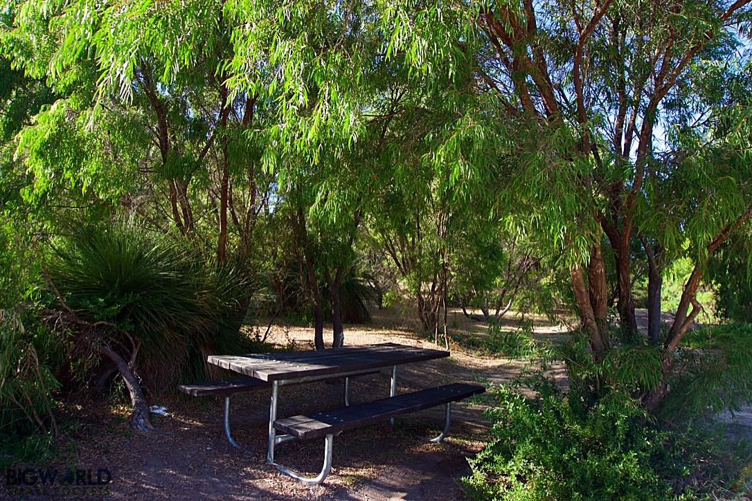 Australia, Margaret River, Contos Campground
