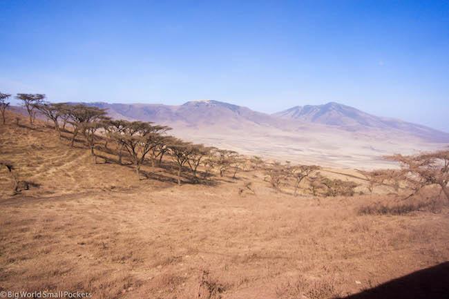 Tanzania, Serengeti, Landscape
