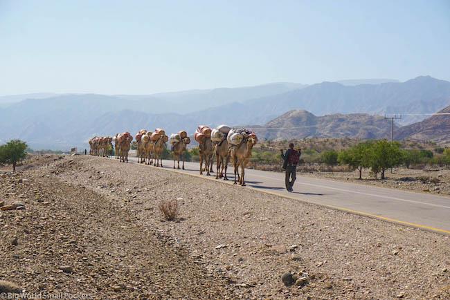 Ethiopia, Danakil Depression, Caravan