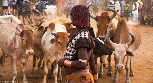 Ethiopia, Hamar, Jumping Bull Ceremony