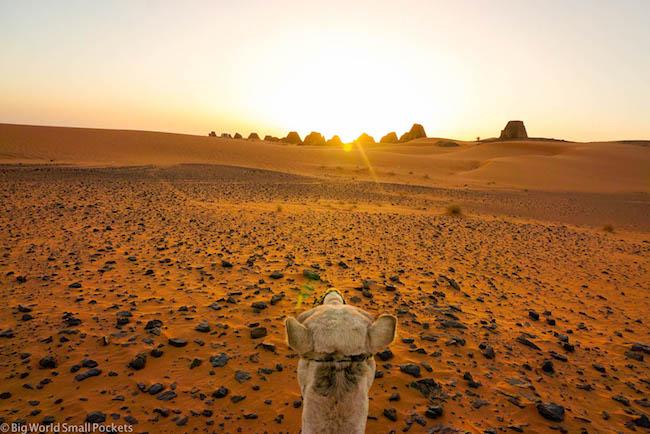 Sudan, Meroe, Camel Ride