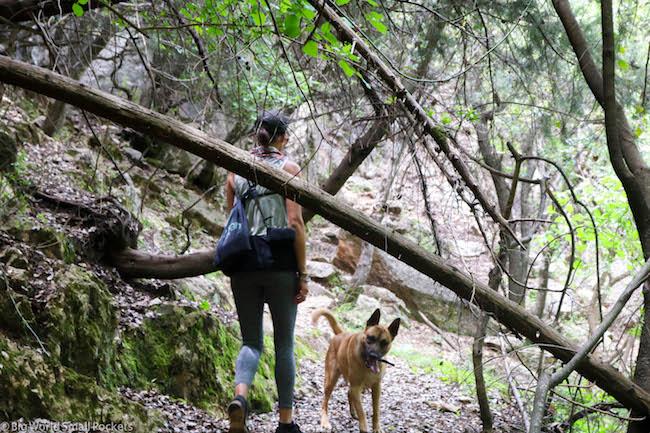 Lebanon, Hiking Lebanon, Trek