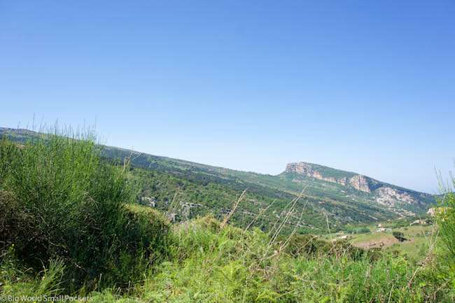 Lebanon, Cedars, Road Trip