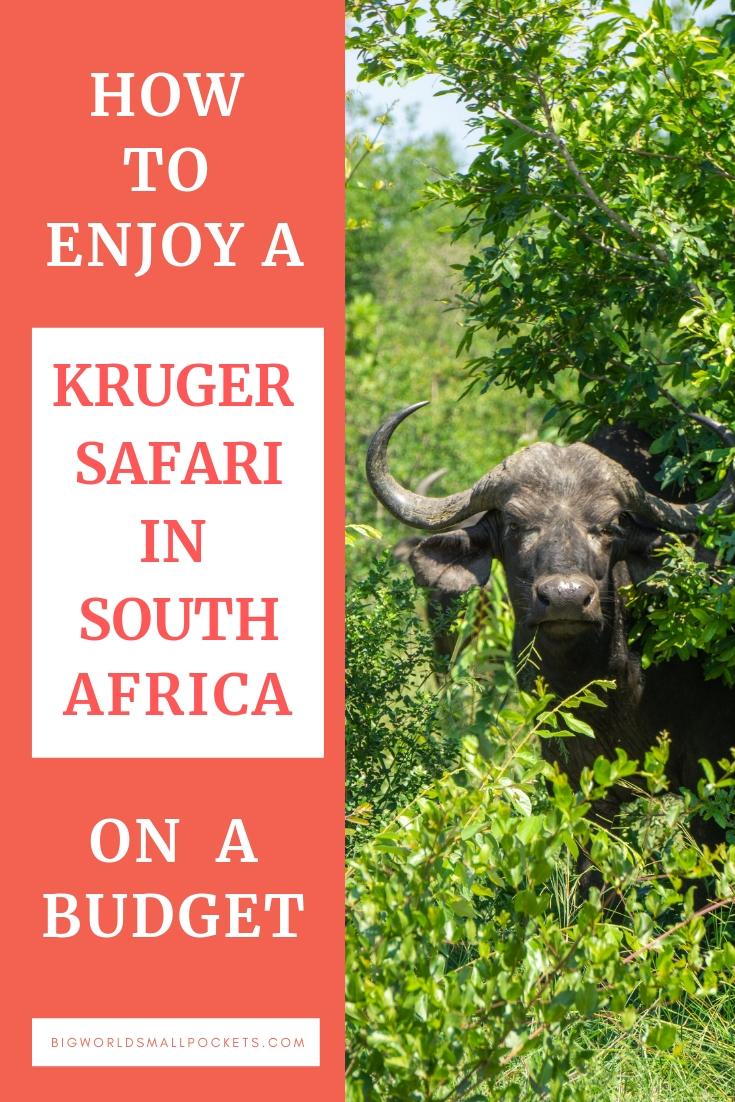 How to Enjoy a Kruger National Park Safari on a Budget! {Big World Small Pockets}