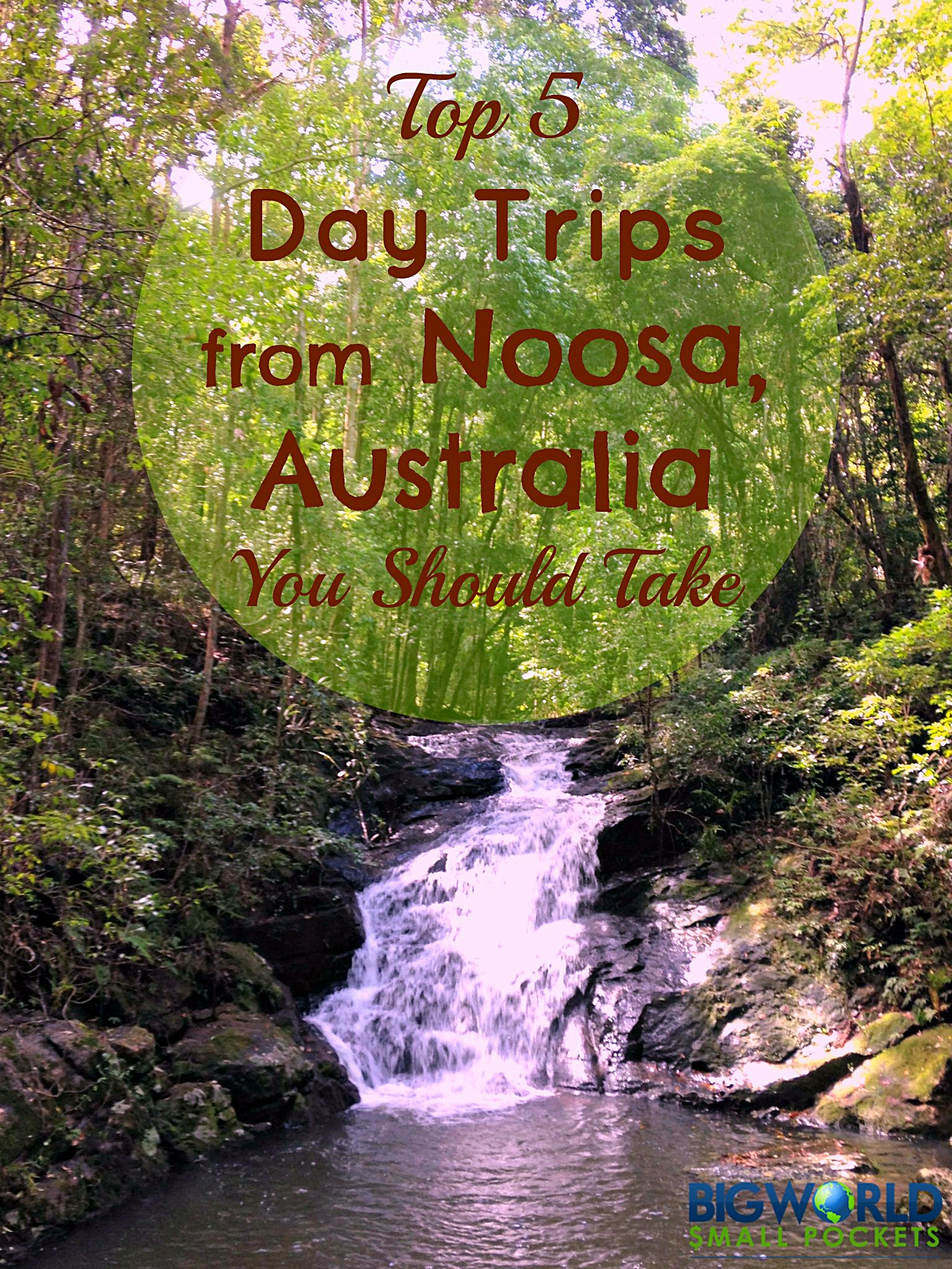 5 Day Trips from Noosa, Australia You Should Take {Big World Small Pockets}