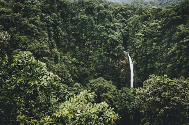 Central America, Jungle, Waterfall