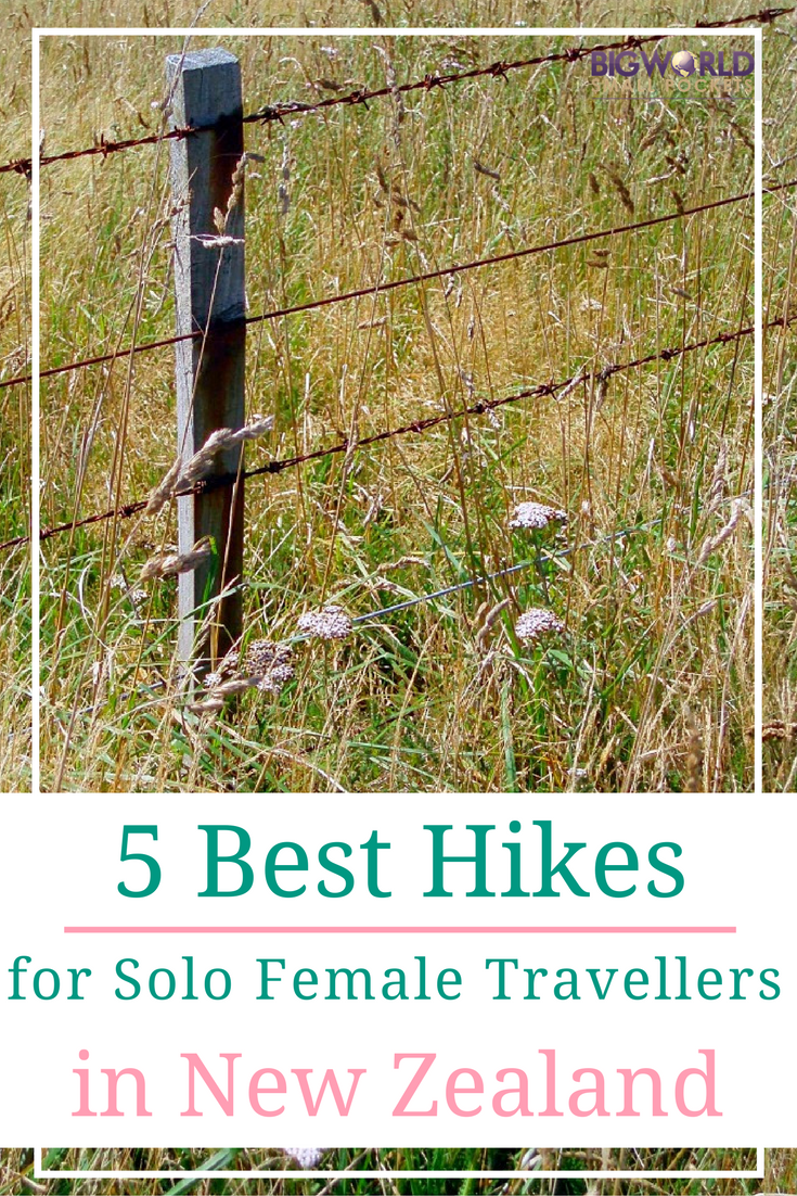 5 Amazing Walks to Hike in New Zealand if You're Travelling as a Solo Female {Big World Small Pockets}