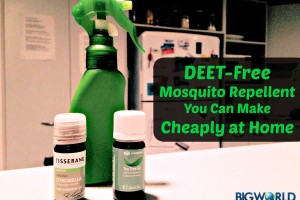 DEET-FREE Mosquito Repellent You Can Make Cheaply at Home