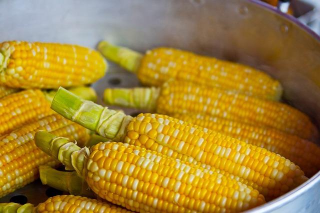 Central America, Food, Corn