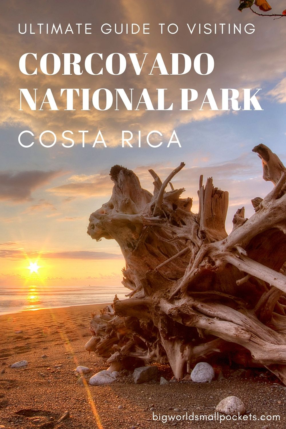 The Ultimate Guide to Visiting Corcovado National Park, Costa Rica