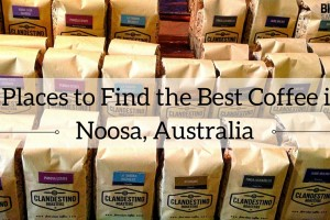 BEST Coffee in Noosa, Australia: 5 Places to Find It