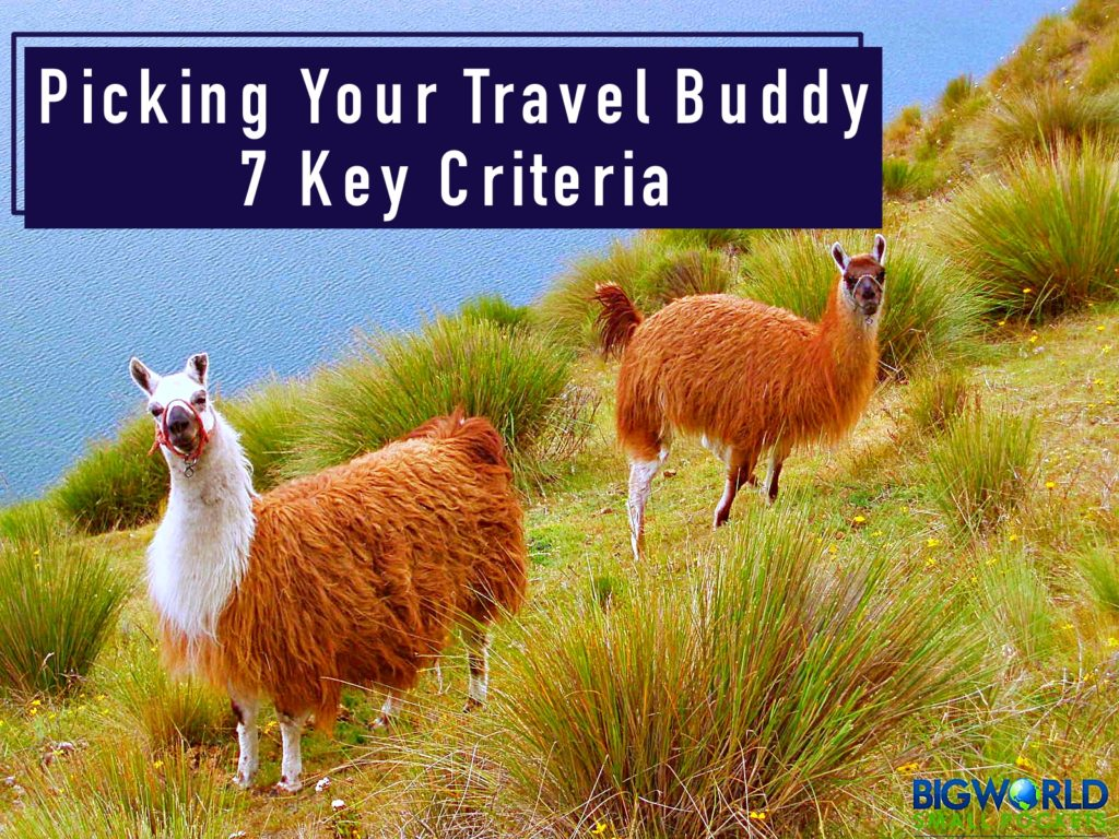 Picking your Travel Buddy