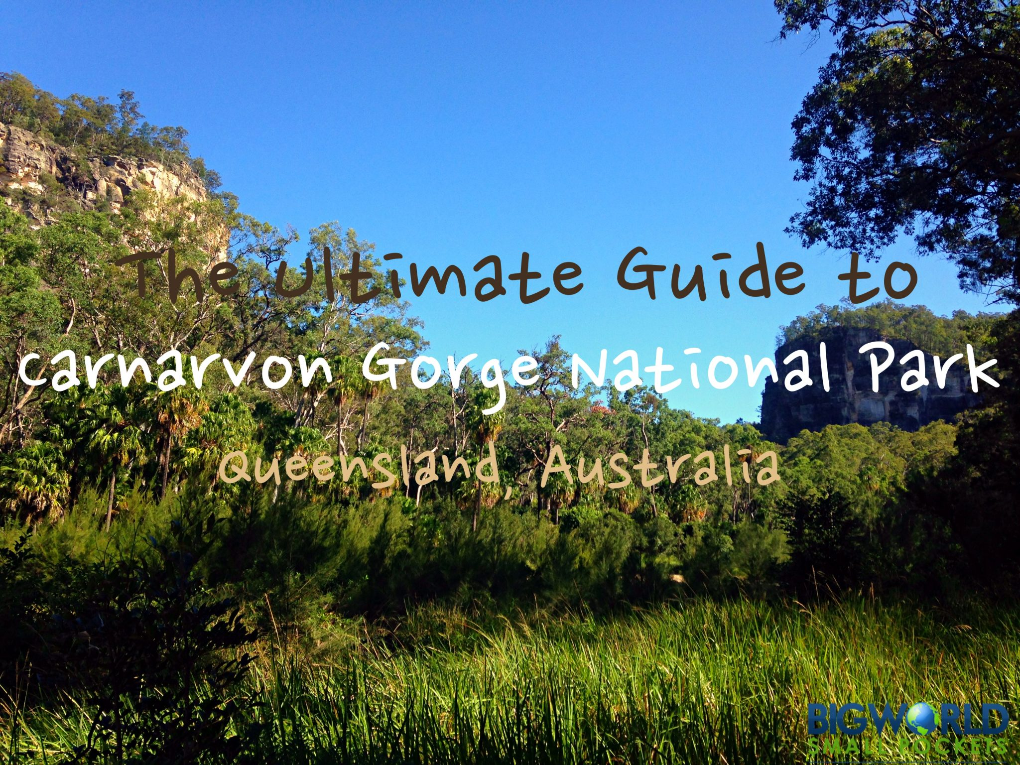 The Ultimate Guide to Carnarvon Gorge