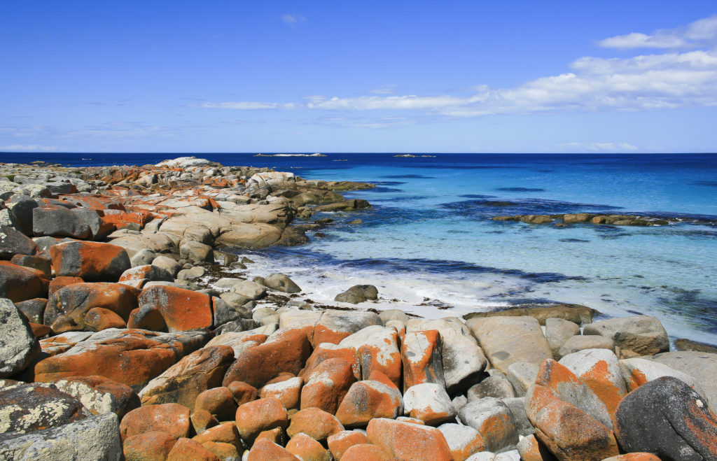 Bay of Fires-1