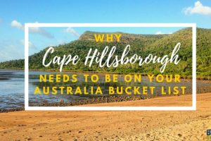 Why Cape Hillsborough Needs to be on Your Australia Bucket List