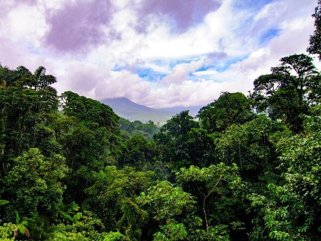 Central America, Costa Rica, La Fortuna
