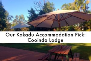 Our Kakadu Accommodation Pick: Cooinda Lodge