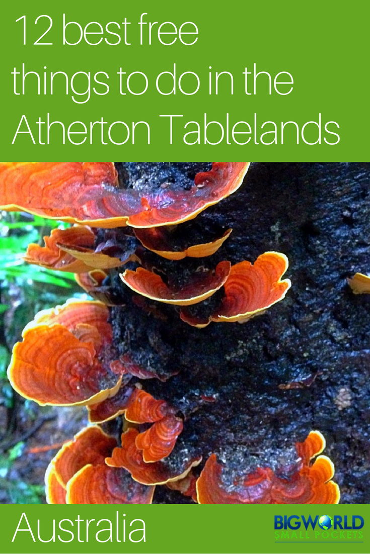 The 12 Best FREE Things To Do in the Atherton Tablelands, Queensland, Australia {Big World Small Pockets}