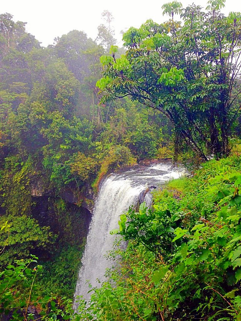 barron-falls