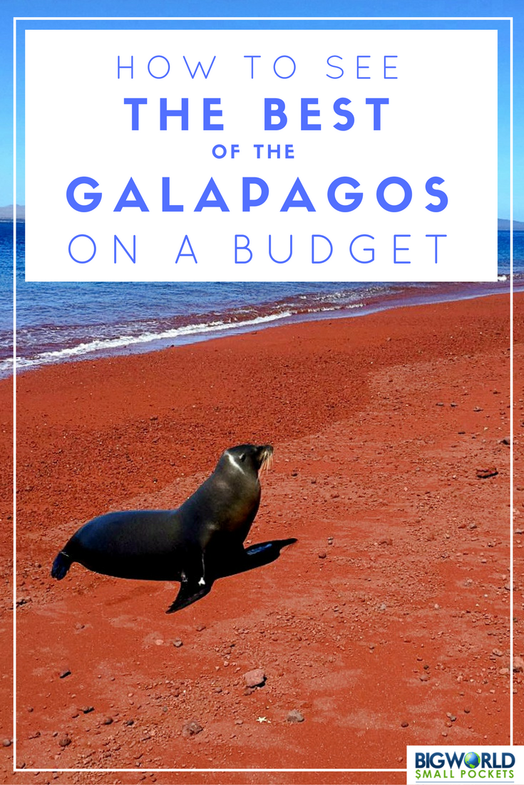 How to See the Best of the Galapagos on a Budget {Big World Small Pockets}