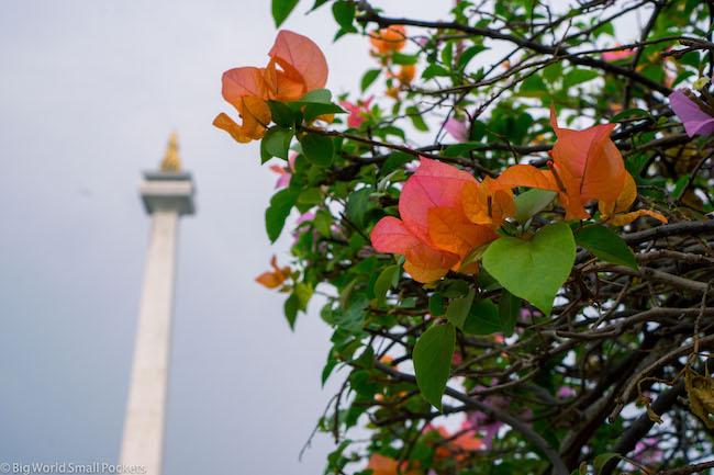 Indonesia, Jakarta, Monas Monument