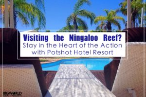 Visiting the Ningaloo Reef? Then Stay in the Heart of the Action with Potshot Hotel Resort