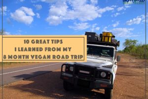 10 Great Tips I Learnt From My 8 Month Vegan Road Trip