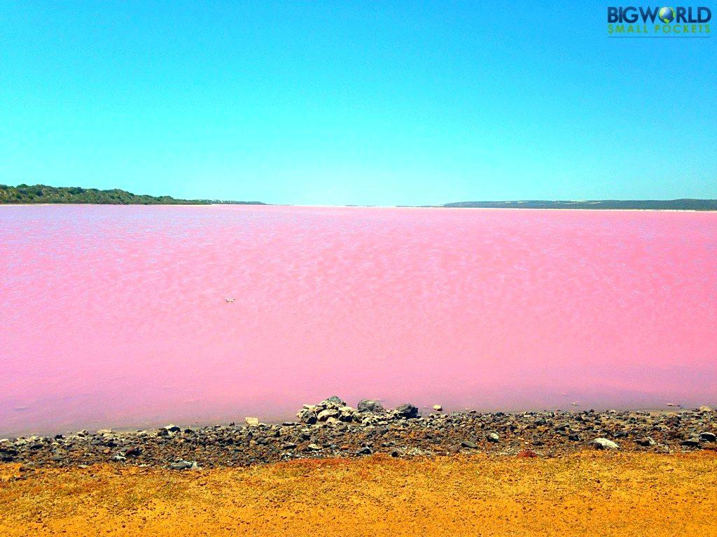Australia, Gregory, Pink Lake