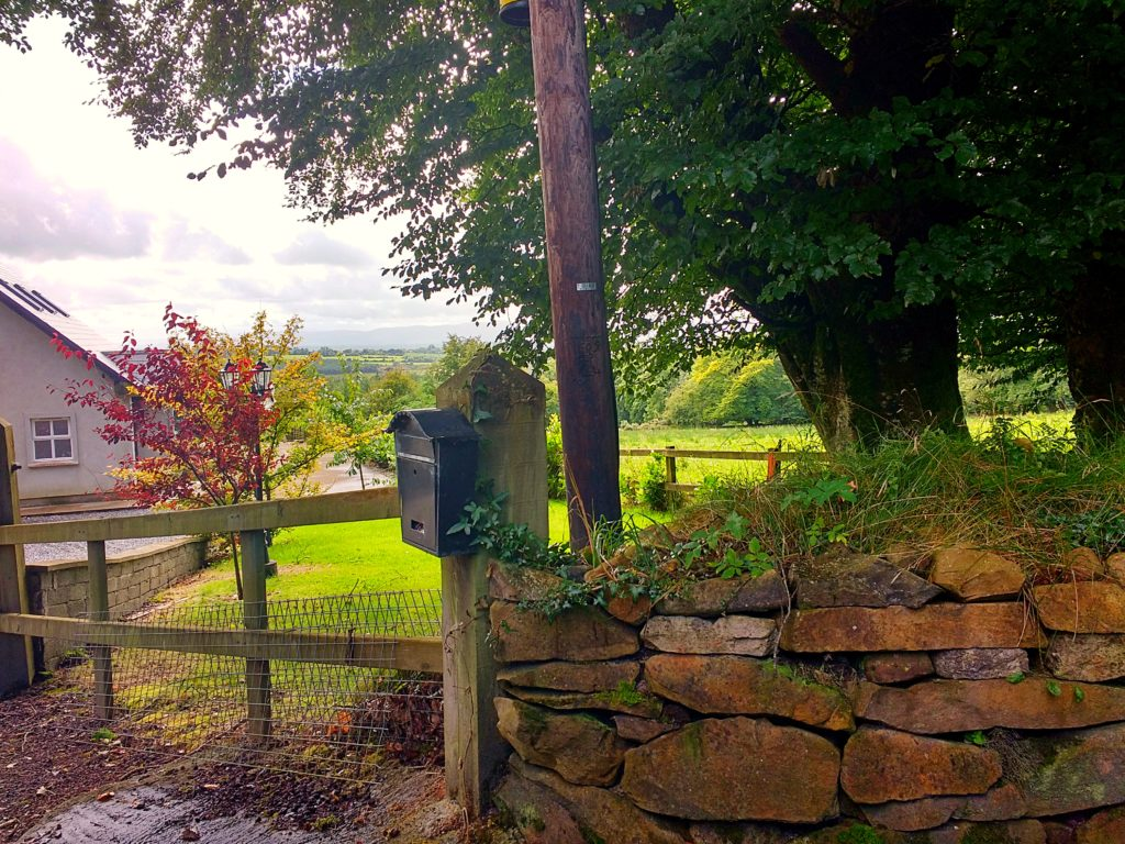 view-from-the-mailbox-housesitting-in-tipperary
