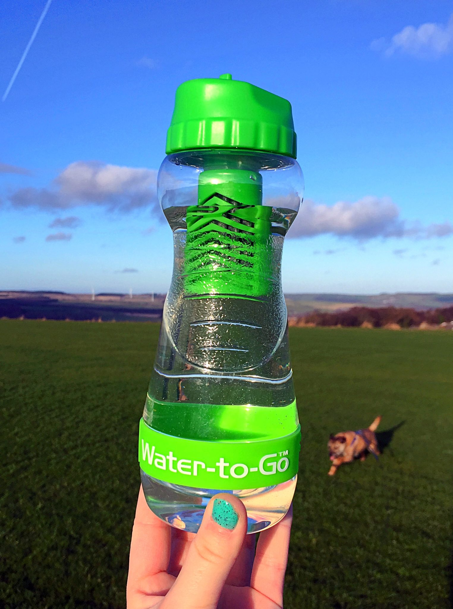 Water-To-Go Bottle