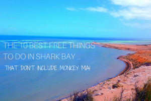 The 10 Best Free Things to do in Shark Bay … that don't include Monkey Mia!