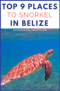 The Top 9 Places for an Incredible Belize Snorkel Experience {Big World Small Pockets}