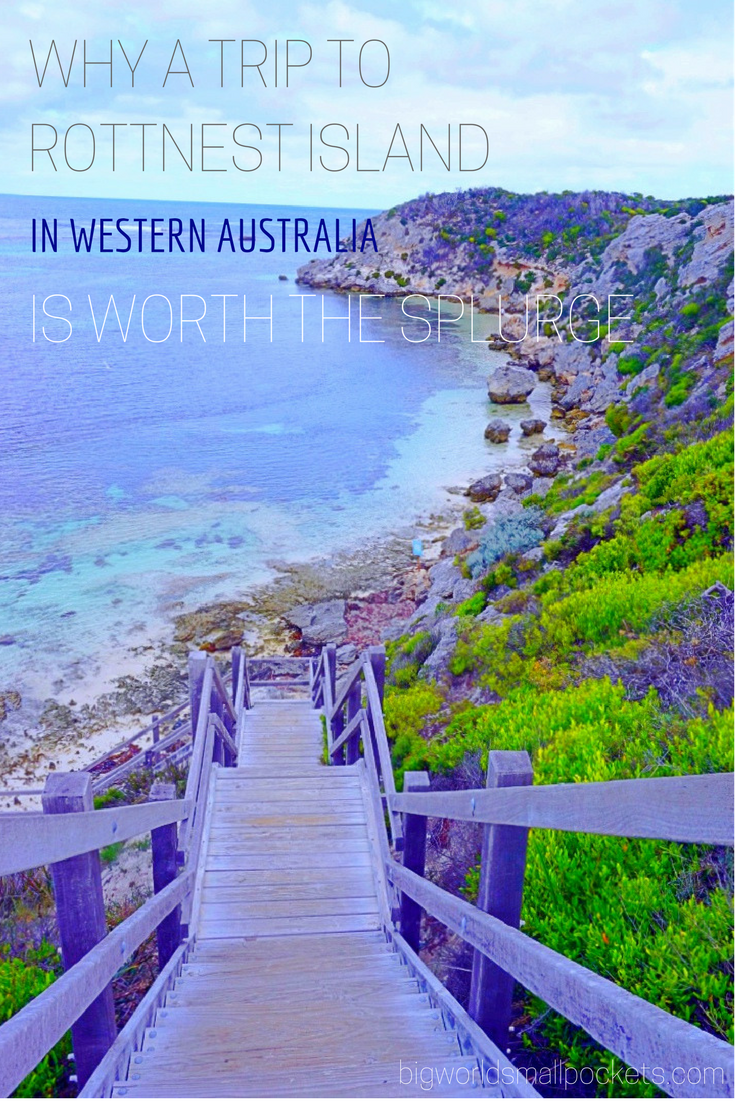 Why a Trip to Rottnest Island (in Western Australia) is Worth Every Cent {Big World Small Pockets}