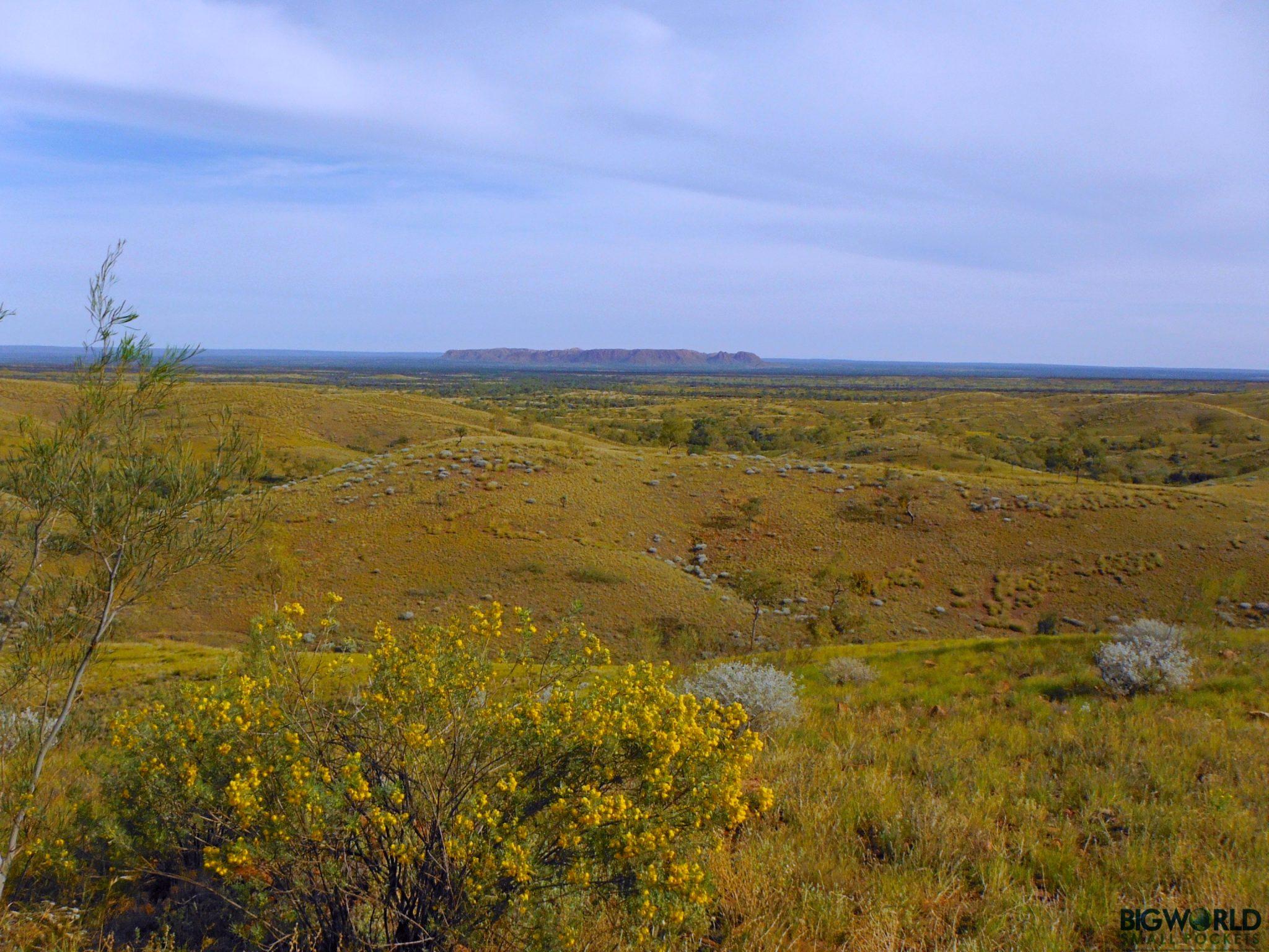 Australia, NT, Goose Bluff