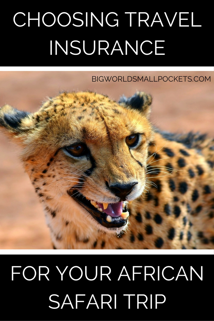 Choosing Travel Insurance for Your African Safari Trip {Big World Small Pockets}