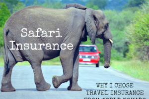 Safari Insurance : Why I Chose Travel Insurance from World Nomads