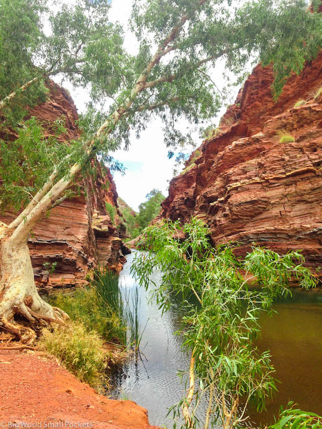 Australia, Karijini, Hammersley Gorge