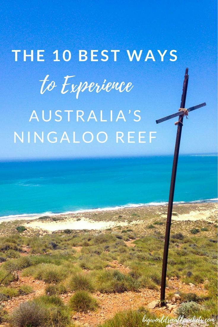 The 10 Best Ways to Experience Australia's Ningaloo Reef {Big World Small Pockets}