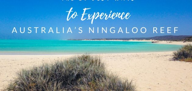 The 10 Best Ways to Experience Australia's Ningaloo Reef