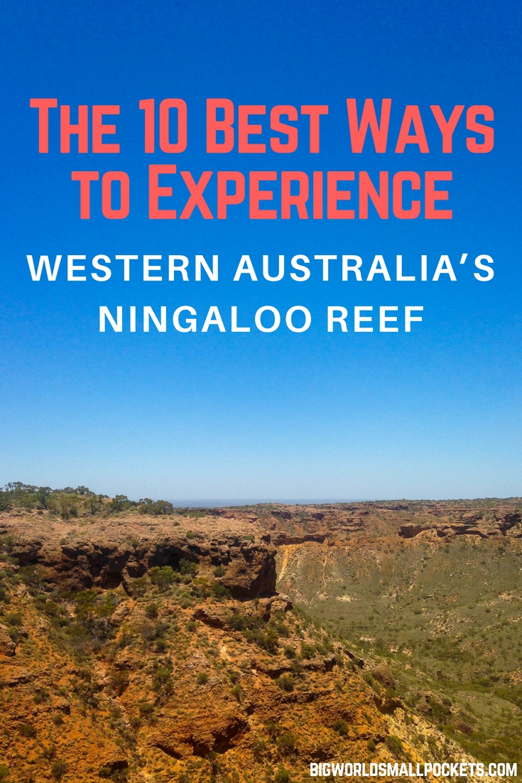 The 10 Best Ways to Experience Western Australia's Ningaloo Reef {Big World Small Pockets}