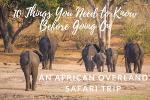 10 Things You Need to Know Before Going on an African Overland Safari Trip