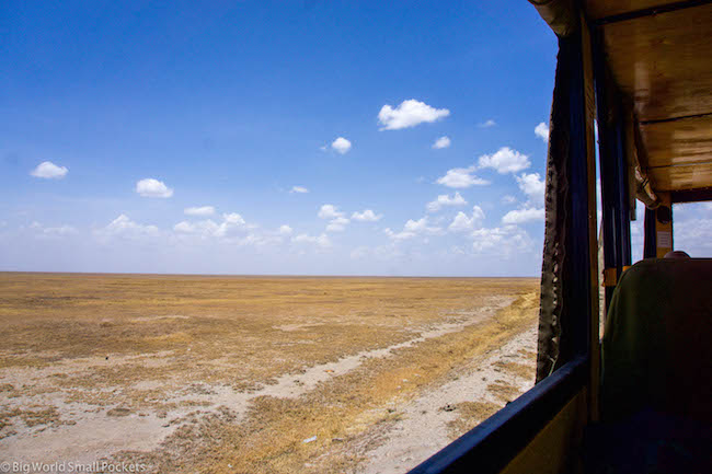 Absolute Africa, Serengeti, Window View