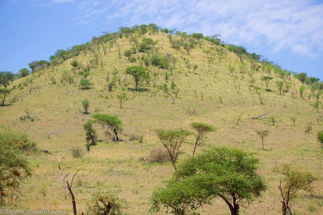 Border Crossing, Tanzanian Hills