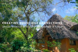 Creating Conscious Connections : Distant Relatives Ecolodge & Backpackers in Kenya