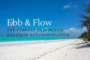 Ebb & Flow : The Perfect Paje Beach, Zanzibar Accommodation