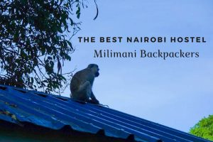 The Best Nairobi Hostel: Milimani Backpackers