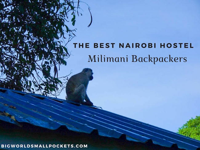 The Best Nairobi Hostel // Milimani Backpackers