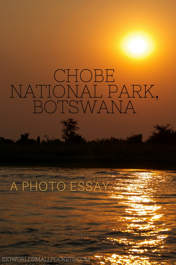 Chobe National Park, Botswana - A Photo Essay {Big World Small Pockets}