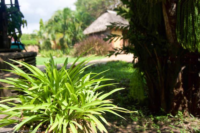 Kenya, Diani Backpackers, Gardens