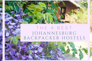 The 4 Best Johannesburg Hostels